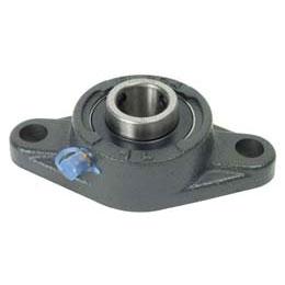 Flange bearing - Cast iron - 2 fixing holes -